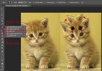 How to use patch tool in photoshop cs6